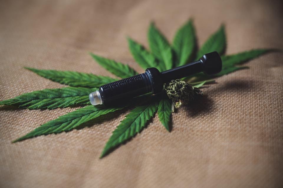 https://pixabay.com/de/photos/cbd-hanf-unkraut-cannabis-4349287/