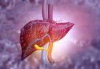 cbd and liver disease