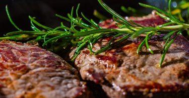 new-zealand-hemp-based-meat