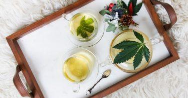 cbd tea study