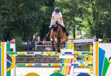 Does CBD Count As Doping for Sport Horses?